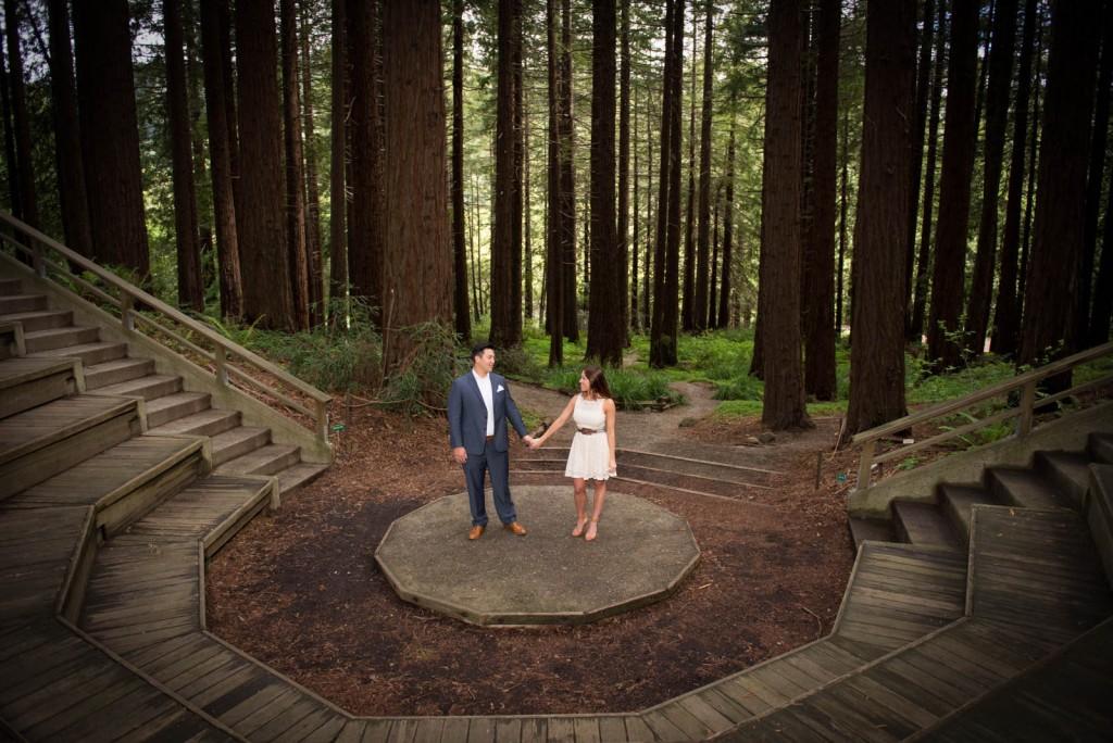 Redwood Grove Engagement